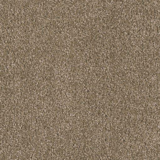 Tumbleweed - 829