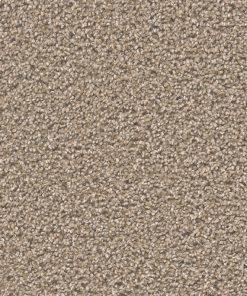 Carnival - Egyptian Sand - 100